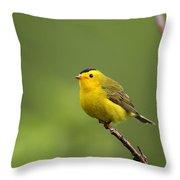 Wilsons Warbler Throw Pillow