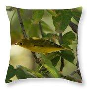 Wilson's Warbler Throw Pillow
