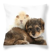 Yorkipoo Pup With Guinea Pig Throw Pillow
