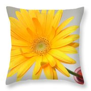 5171.2 Throw Pillow