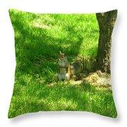 5368c Throw Pillow