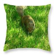 5371c Throw Pillow