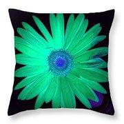5419c4-002 Throw Pillow