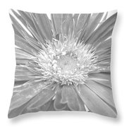 5440c4 Throw Pillow