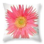 5487c1 Throw Pillow