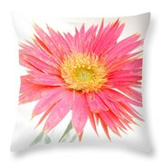 5491c1 Throw Pillow
