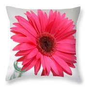 5524 Throw Pillow