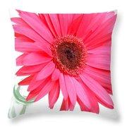 5524c1-001 Throw Pillow