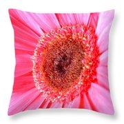 5536c1 Throw Pillow