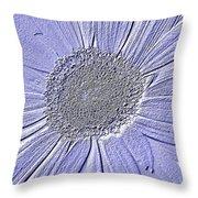 5540c7 Throw Pillow