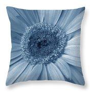 5540c9 Throw Pillow