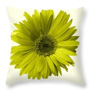 5552c6-004 Throw Pillow