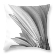 5570c3 Throw Pillow