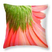5572c Throw Pillow