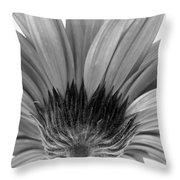 5574-31c Throw Pillow