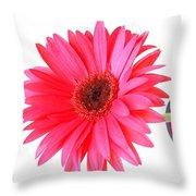 5634c4 Throw Pillow