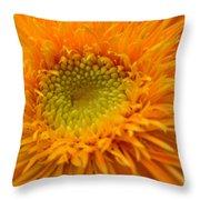 5965 Throw Pillow