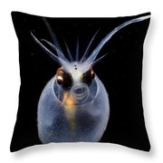 Cockatoo Squid Throw Pillow