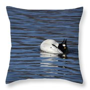 Common Goldeneye Throw Pillow