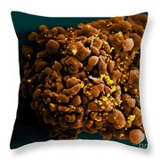 Hiv-infected H9 T Cell, Sem Throw Pillow by Science Source