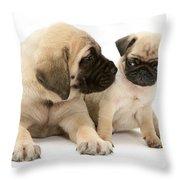 Pug And English Mastiff Puppies Throw Pillow