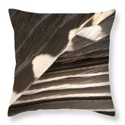 Red-bellied Woodpecker Feathers Throw Pillow