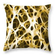 Sem Of Human Shin Bone Throw Pillow by Science Source