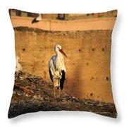 Storks In Marrakech Throw Pillow