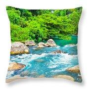 Stream  Throw Pillow by MotHaiBaPhoto Prints