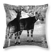 Two Stripes Throw Pillow