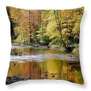 Williams River Autumn Throw Pillow