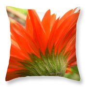 6121 Throw Pillow