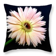 61711a Throw Pillow