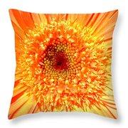 6190-007 Throw Pillow