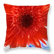 6282 Throw Pillow