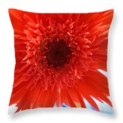 6283 Throw Pillow
