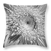 63321c Throw Pillow