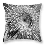 63321c1 Throw Pillow