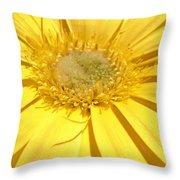 6388a Throw Pillow