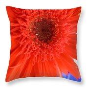 6448 Throw Pillow