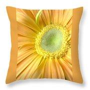 67111a-002 Throw Pillow