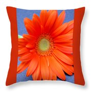 67441a Throw Pillow