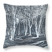 Ambresbury Banks  Throw Pillow