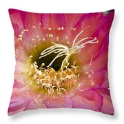 Dark Pink Cactus Flower Throw Pillow