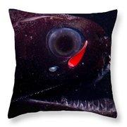 Dragonfish Throw Pillow