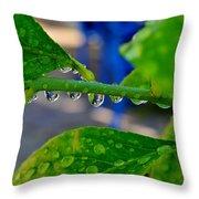 Raindrops On Leaf Throw Pillow