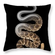 Southern Pacific Rattlesnake X-ray Throw Pillow