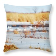 7 Swans Swimming  Throw Pillow
