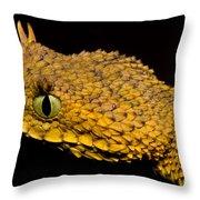 Usambara Eyelash Bush Viper Throw Pillow