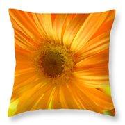 7321-002 Throw Pillow